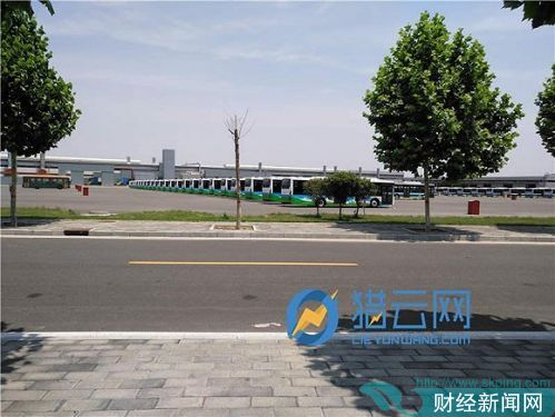 广通汽车厂区后方库存车辆