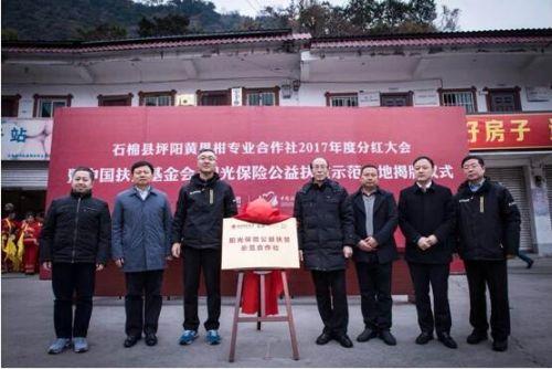 """阳光保险四川雅安公益扶贫示范基地揭牌 """"爱心阳光""""在行动"""