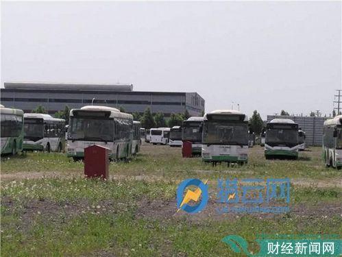 广通汽车厂区右侧场地库存车辆,上面落满灰尘